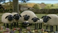 Shaun The Sheep 35. Tidy Up