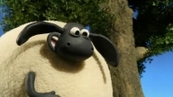 Shaun The Sheep 49. Supersize Timmy