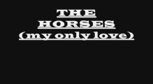 the horses (my only love)