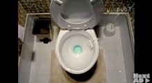 Toilet disaster!